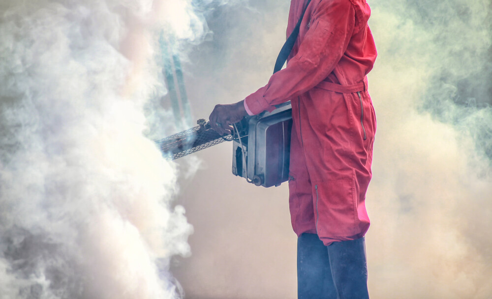 EFFECTIVE MOSQUITO CONTROL SERVICES IN HOUSTON, TEXAS - 77080 | Total pest Elimination