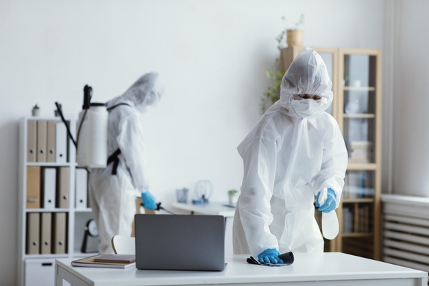 How pests can cause irreversible damage to your business | TotalPestElimination